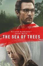 Море деревьев