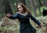 Сцена из фильма Гарри Поттер и Дары смерти: Часть 1 / Harry Potter and the Deathly Hallows: Part 1 (2010)