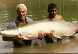 Сцена из фильма Discovery Channel: Animal Planet: Речные монстры / River monsters (2009) Discovery Channel: Animal Planet: Речные монстры сцена 1