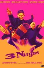 Три ниндзя / 3 Ninjas (1992)
