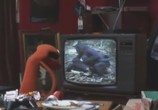 Сцена из фильма Мохнатики / Fur TV (2010) Мохнатики сцена 2
