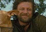 Сцена из фильма Троя / Troy (2004) Троя