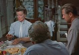 Сцена из фильма Продавец дождя / The Rainmaker (1956) Продавец дождя сцена 1