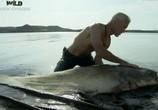 Сцена из фильма Discovery Channel: Animal Planet: Речные монстры / River monsters (2009) Discovery Channel: Animal Planet: Речные монстры сцена 6