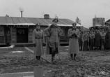 Сцена из фильма Лагерь для военнопленных №17 / Stalag 17 (1952) Лагерь для военнопленных №17 сцена 2