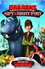 Как приручить дракона: Дар ночной фурии / Dragons: Gift of the Night Fury (2011)